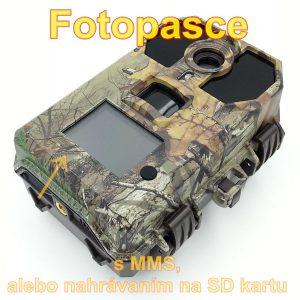 fotopasca_17
